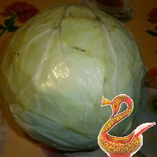 Take One cabbage, weighing about 5 pounds