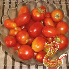 Tomatoes in own juice recipe for ages