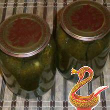 Russian homemade Salted cucumbers for winter