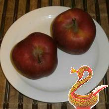 two large (or three smaller) Apple